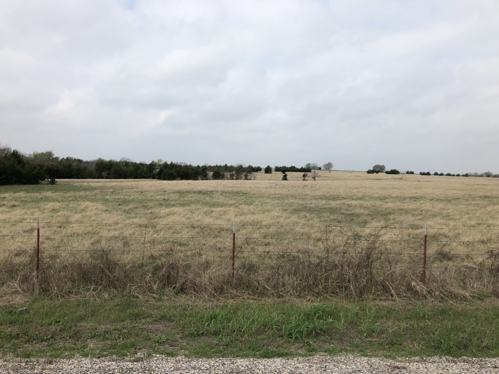Ranch Pasture 1