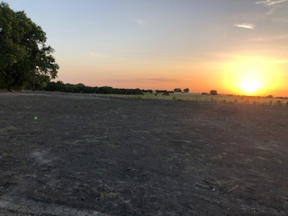 Sunset at the Ranch