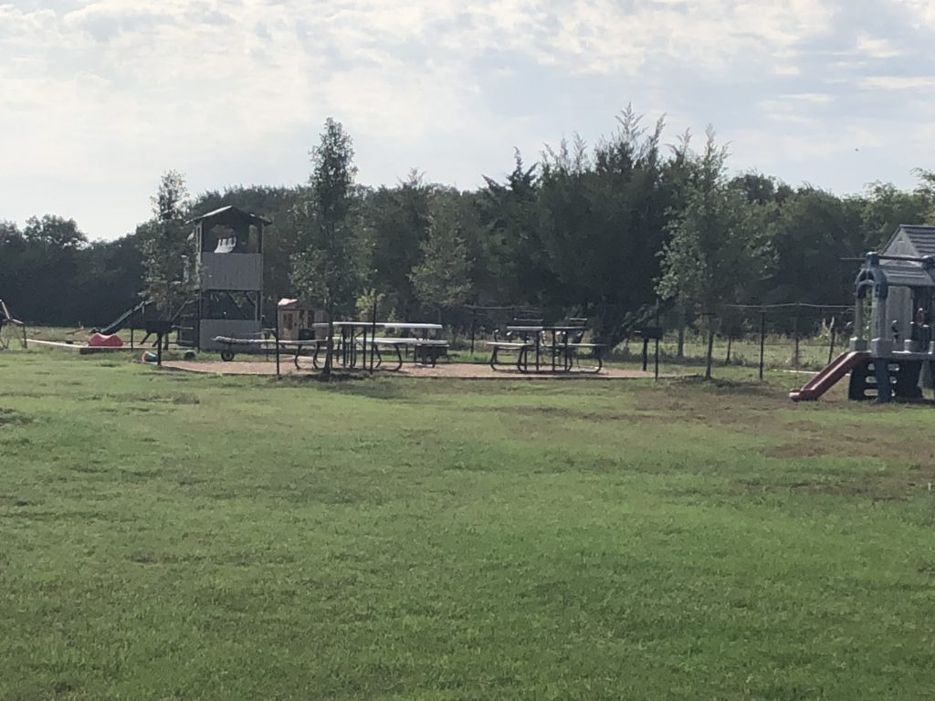 Picnic and Playground Area